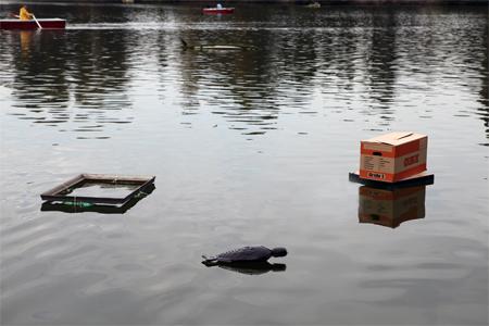 Marcus Becker, O.T., 2011 (Rahmen)/ Oliver Blohm, O.T., 2001 (Kiste)/ Arthur van Balen, Compost Sculpture, 2011(Fisch), Elisophie Eulenburg, O.T., 2011 (Blumen)